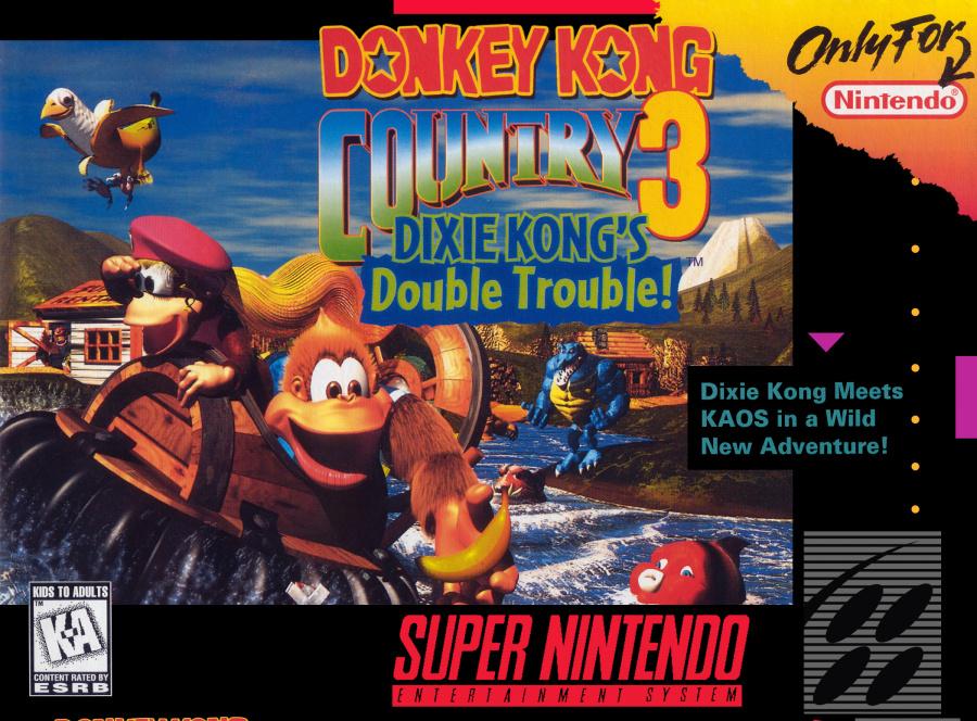 Donkey Kong Country 3