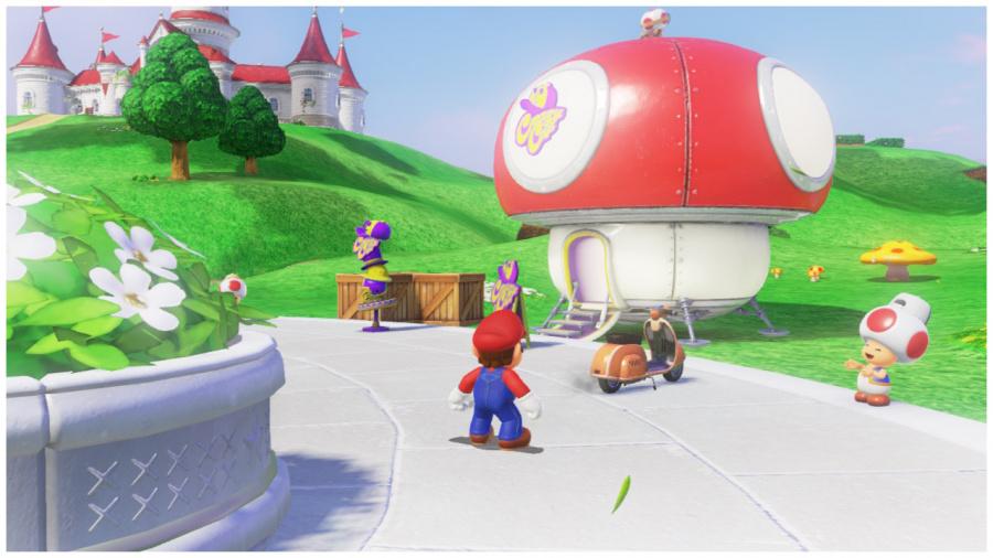 Crazy Cap Mushroom Kingdom