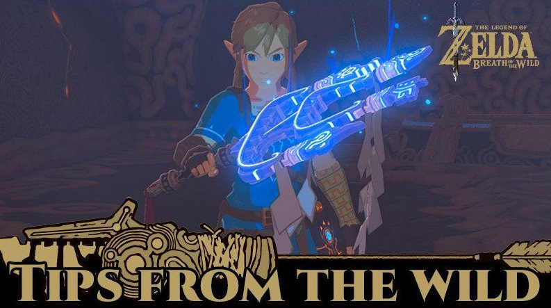The Latest Zelda: Breath of the Wild Gift Should Help You With 'That' Hard Bit in the DLC