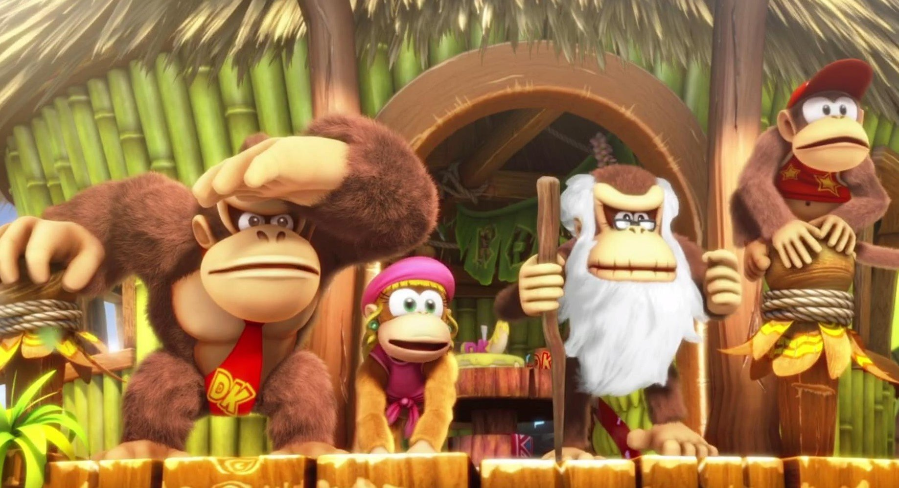 Donkey Kong Country: Tropical Freeze's Switch File Is Almost