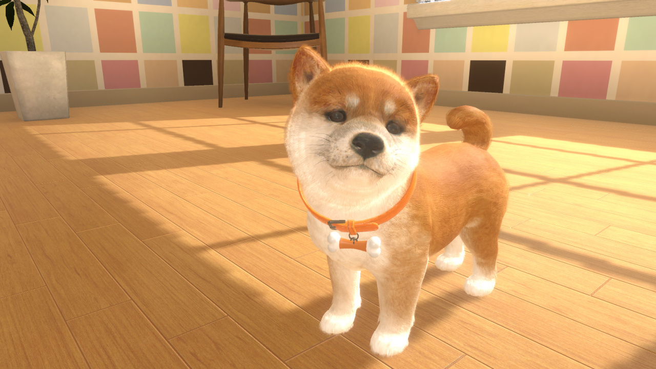 Nintendogs-Style Switch Exclusive Little Friends: Dogs