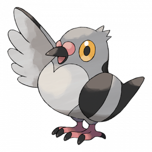 Pokemon: Pidove (Galar Pokédex #026 / National Pokédex #519)