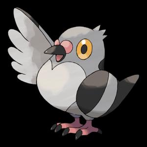 Pokemon: Pidove (Galar Pokédex #026 / National Pokédex #519)