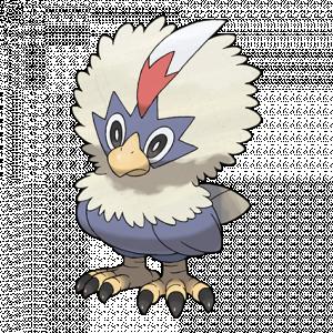 Pokemon: Rufflet (Galar Pokédex #281 / National Pokédex #627)