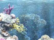 My Aquarium (WiiWare)