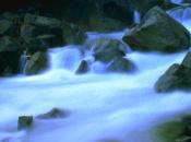 White-Water Domo (DSiWare)