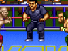 Natsume Championship Wrestling (Wii U eShop / Super Nintendo)