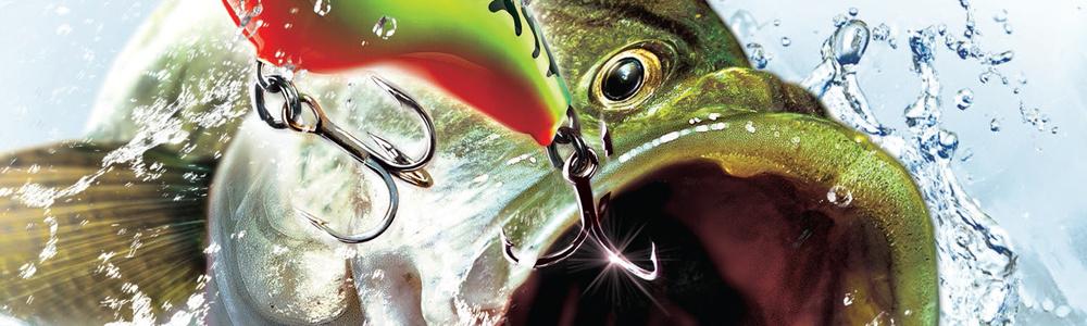 Rapala pro bass fishing review wii u nintendo life for Wii u fishing game