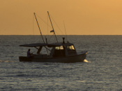 Reel Fishing Ocean Challenge (WiiWare)