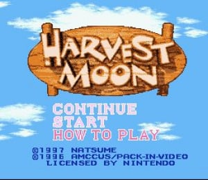 Harvest Moon Review - Screenshot 2 of 2