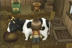 Harvest Moon: Tree of Tranquility Screenshot
