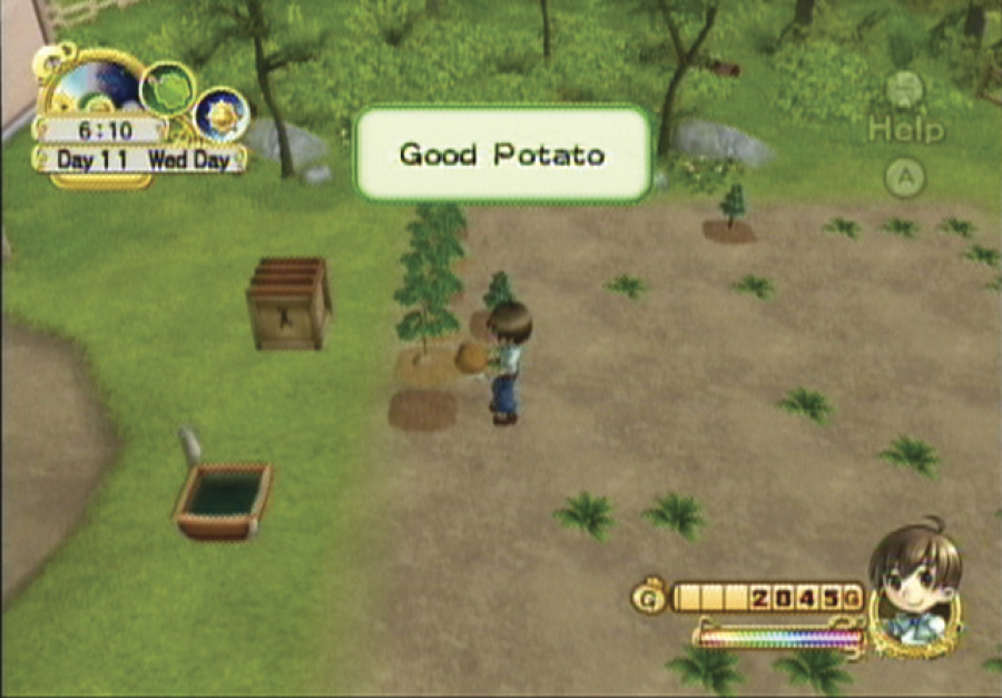 Harvest Moon: Tree of Tranquility Review - Screenshot 1 of 4