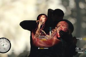 Sniper Elite 4 Screenshot
