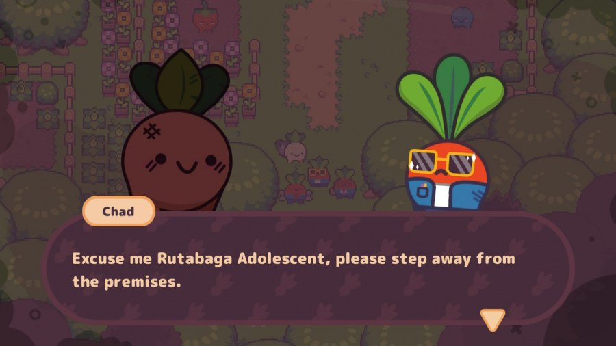 Turnip Boy Commits Tax Evasion Review - Screenshot 1 of 6