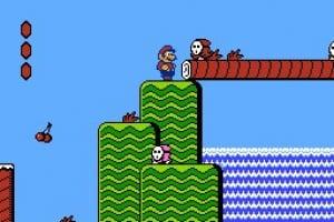 Super Mario Bros. 2 Screenshot