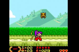 Shantae Screenshot