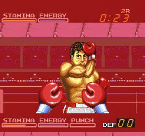 Digital Champ: Battle Boxing Review - Screenshot 1 of 2
