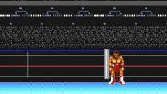 Digital Champ: Battle Boxing Screenshot