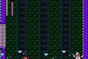 Mega Man 9 Screenshot