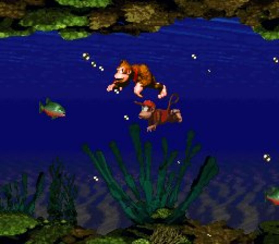 Donkey Kong Country Screenshot