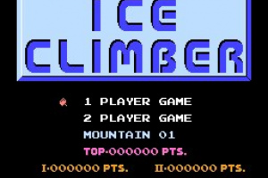 Ice Climber Screenshot