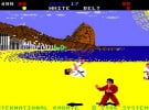 International Karate Screenshot