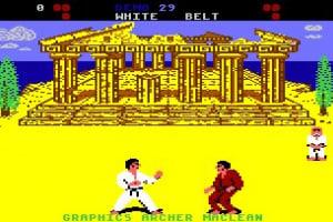 International Karate Screenshot