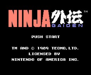 Ninja Gaiden Review - Screenshot 2 of 2