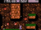 Ninja Gaiden II: The Dark Sword of Chaos Screenshot