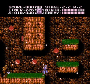 Ninja Gaiden II: The Dark Sword of Chaos Review - Screenshot 3 of 3