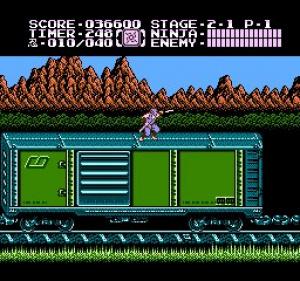 Ninja Gaiden II: The Dark Sword of Chaos Review - Screenshot 3 of 4