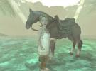 The Legend of Zelda: Twilight Princess Screenshot