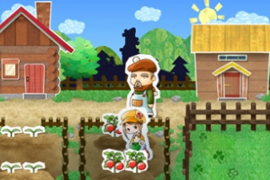 Harvest Moon: My Little Shop Screenshot