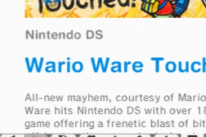 Nintendo DSi Browser Screenshot
