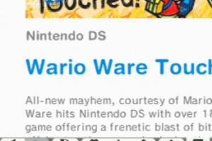 Nintendo DSi Browser Screenshot