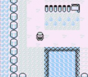 Pokémon Red and Blue Review - Screenshot 3 of 4