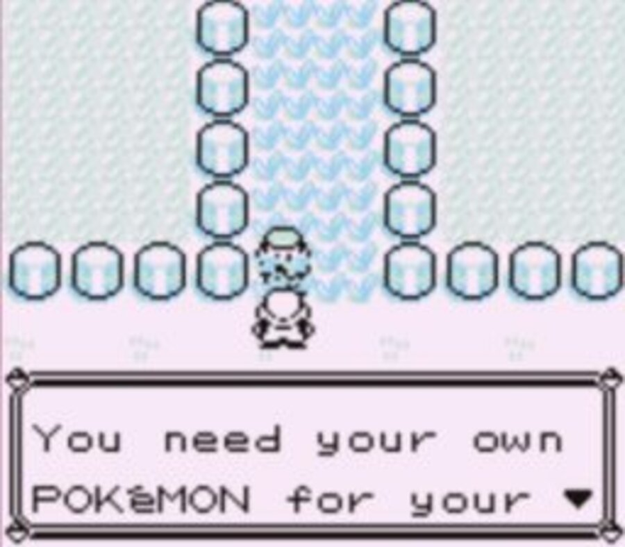 Pokémon Red and Blue Screenshot