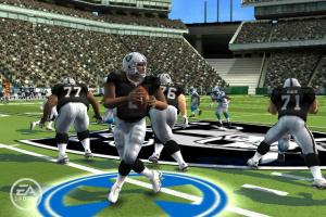 Madden NFL 09 All-Play Screenshot