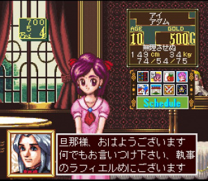 Princess Maker - Legend of Another World Review - Screenshot 1 of 5
