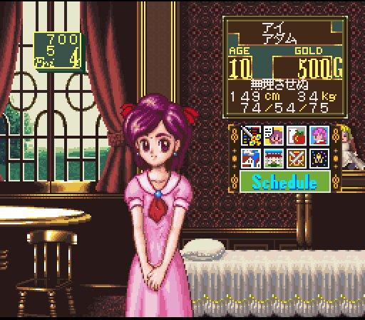 Princess Maker 5