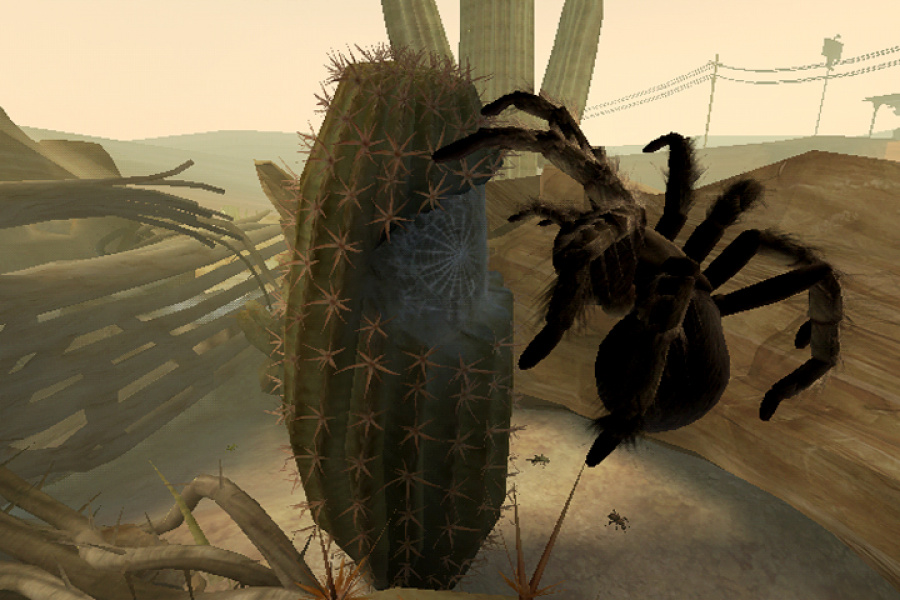 Deadly Creatures Review - Screenshot 2 of 5