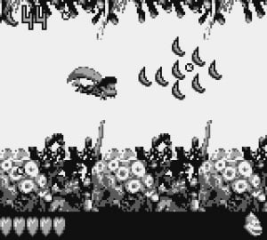 Donkey Kong Land III Review - Screenshot 1 of 5