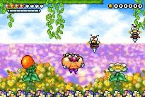Wario Land 4 Screenshot
