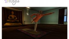 Yoga for Wii Screenshot