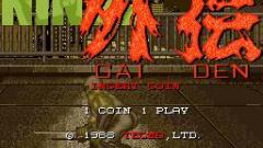 Ninja Gaiden Screenshot