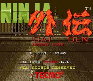 Ninja Gaiden Review - Screenshot 1 of 3