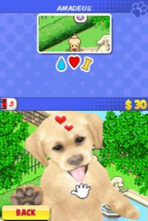 Me and My Dogs: Friends Forever Review - Screenshot 3 of 3
