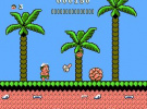 Adventure Island II Screenshot