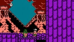 Adventure Island IV Screenshot
