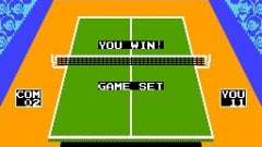 Smash Table Tennis Screenshot